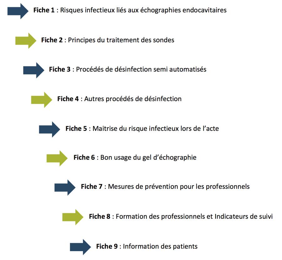 Le rapport sur la prévention du risque infectieux associé aux actes d'échographie endocavitaire se compose de neuf fiches.
