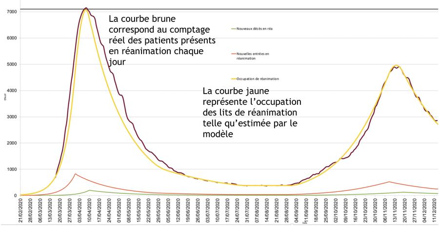 Le modèle développé à Nancy constate bien la diminution de la pression en réanimation après le pic de la deuxième vague. (CHU de Nancy)