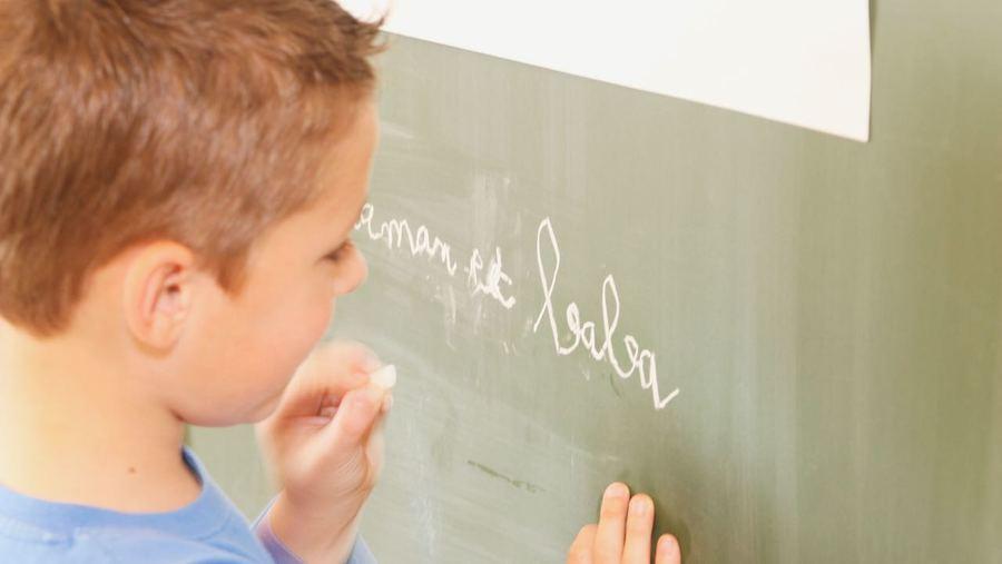 Les troubles du langage et des apprentissages sont souvent repérés par les enseignants. Avec l'accord des parents, ils pourront adresser directement leurs élèves à la plateforme.  (Lemoine/BSIP)
